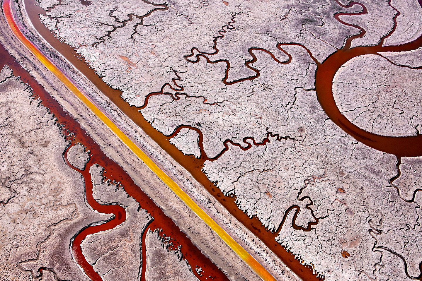 San Francisco Salt Ponds: The Land in Transition