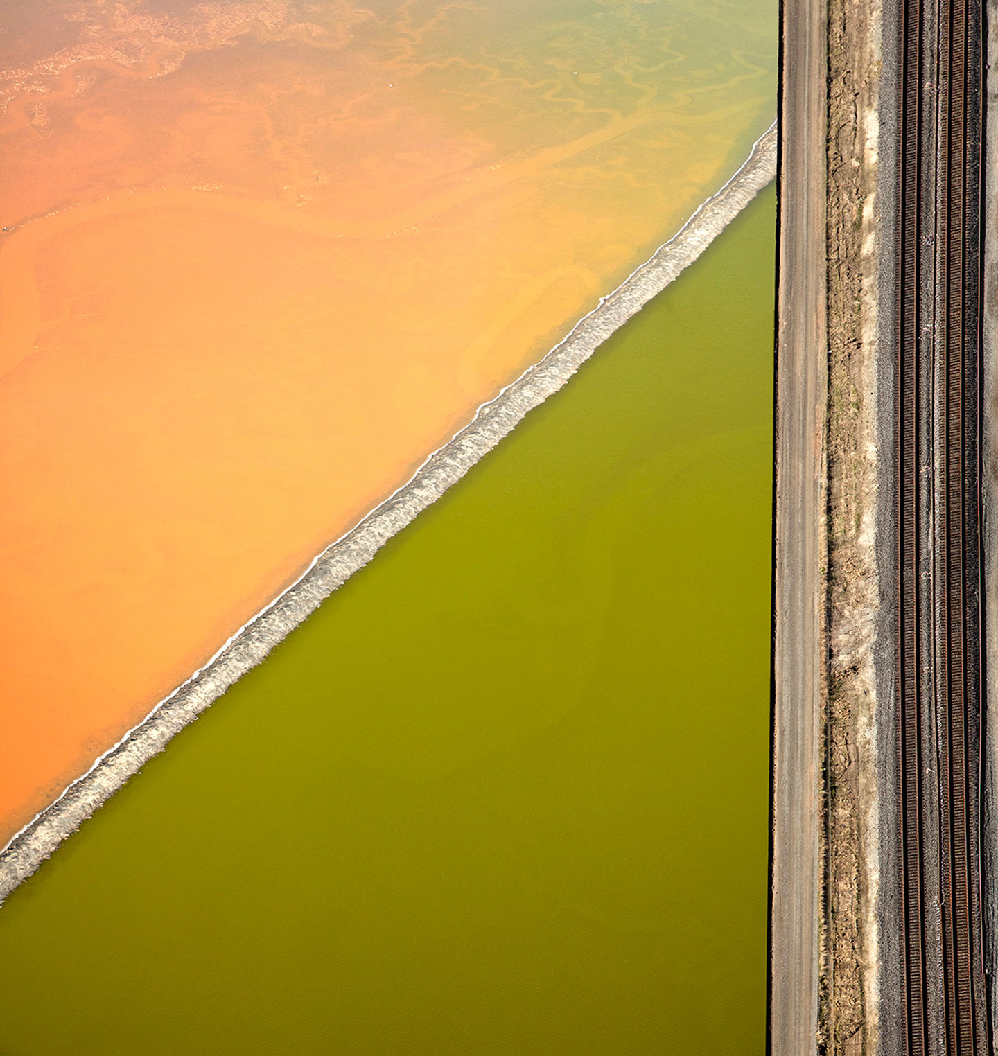 San Francisco Salt Ponds