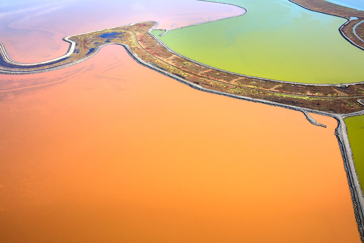 San Francisco Salt Ponds_08
