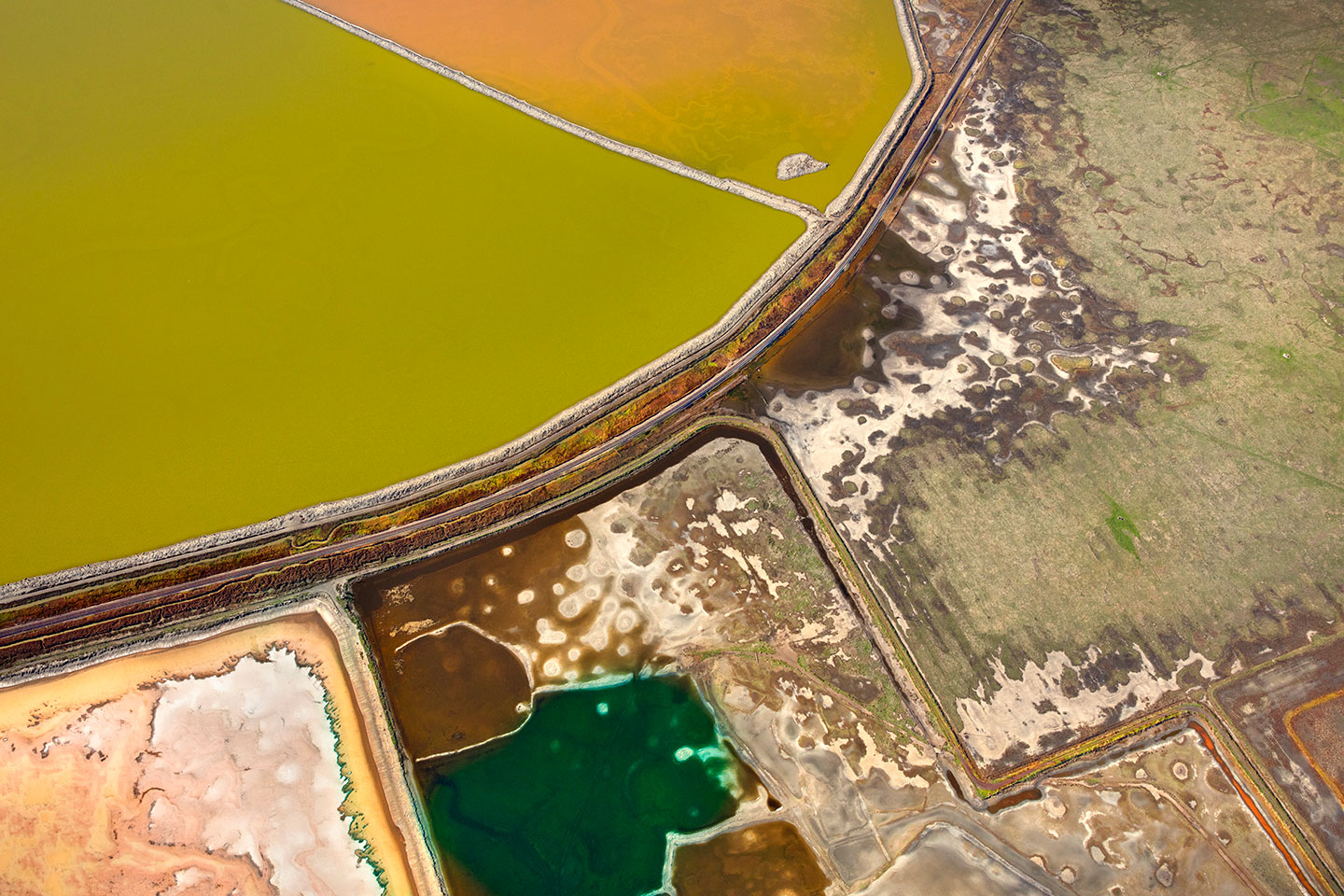 San Francisco Salt Ponds_12