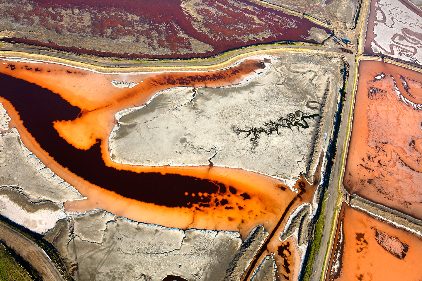 San Francisco Salt Ponds_14