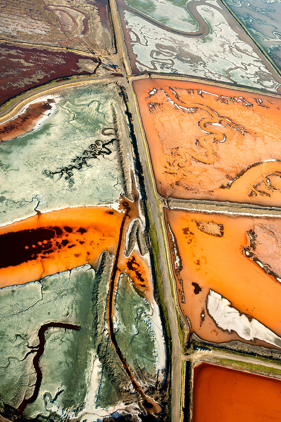 San Francisco Salt Ponds_21