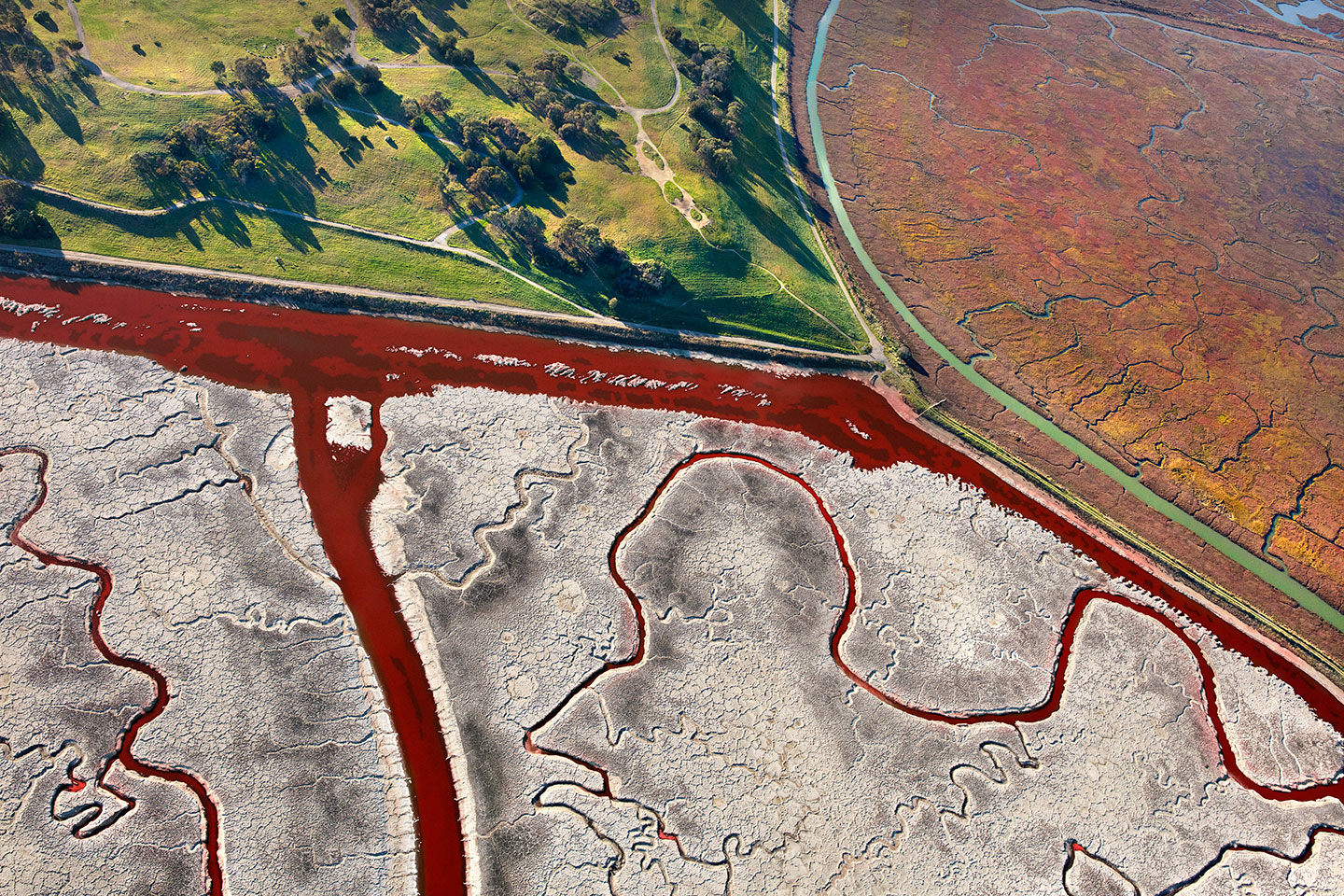 San Francisco Salt Ponds_23