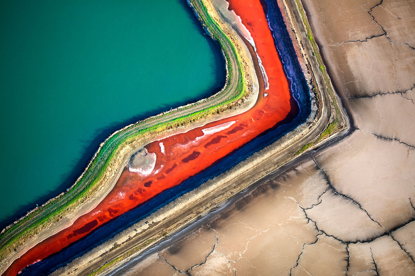 San Francisco Salt Ponds_25