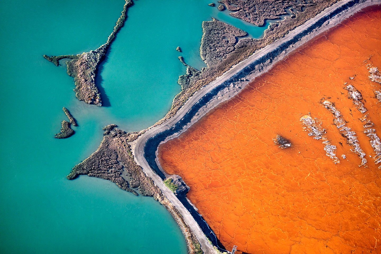 San Francisco Salt Ponds_26