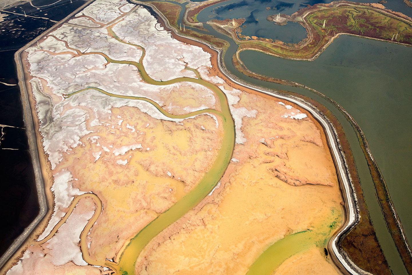 San Francisco Salt Ponds_29