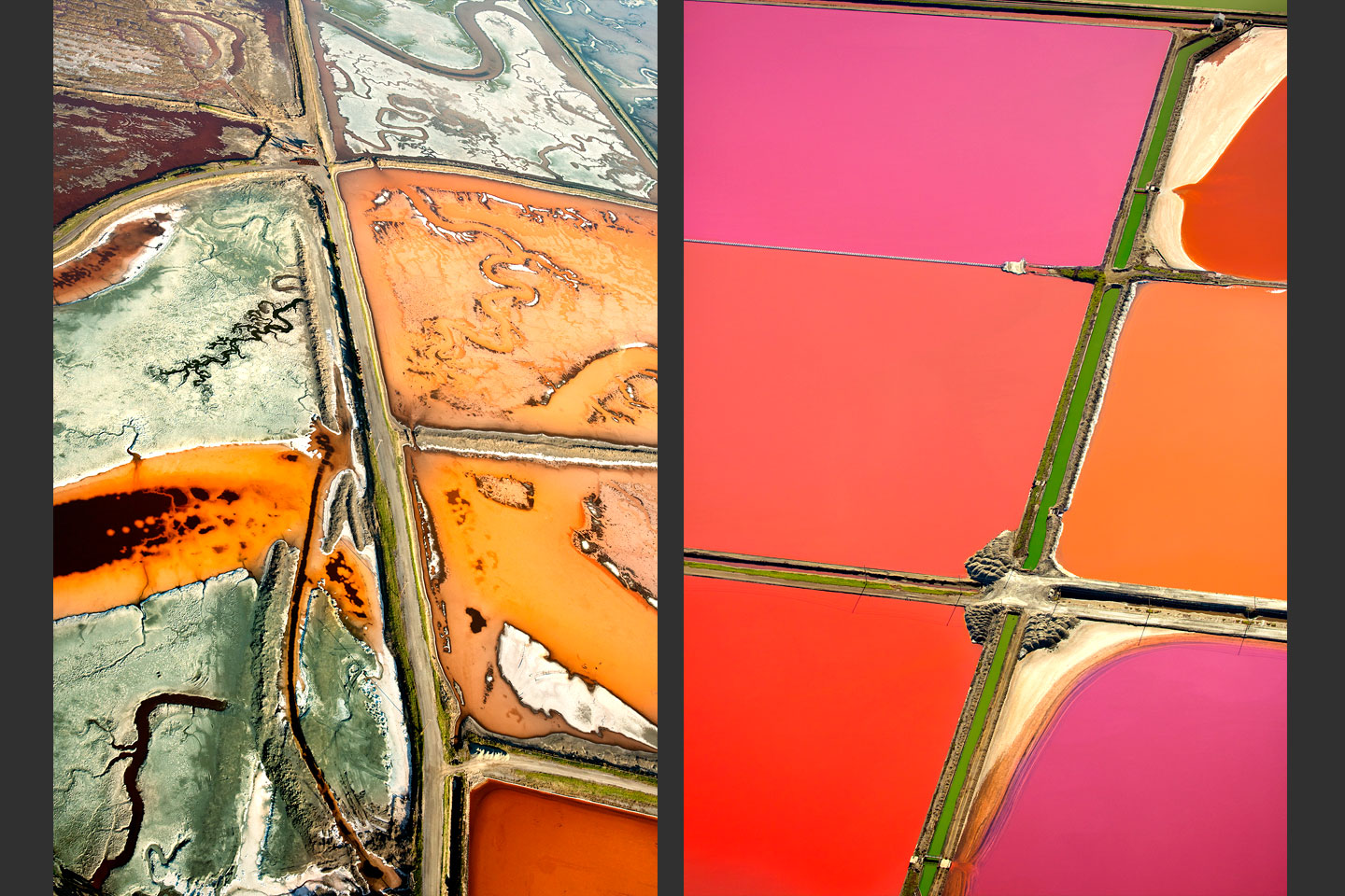 Salt Ponds: The Land in Transition